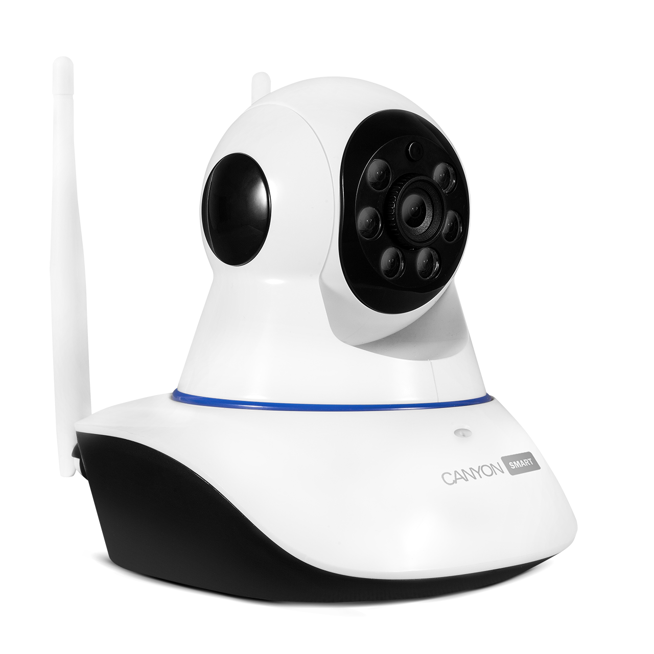 IP Cameras - Canyon